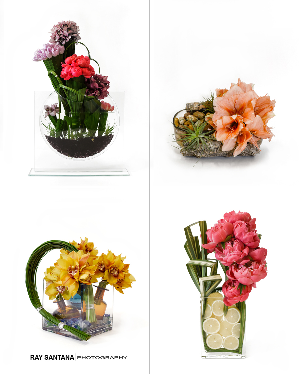 always-flowers-miami-photos